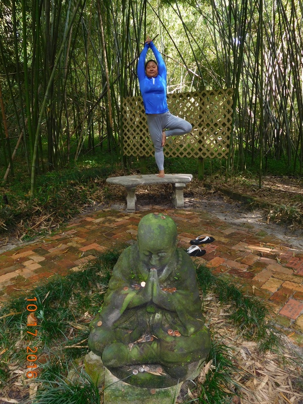 vrksana (tree pose)